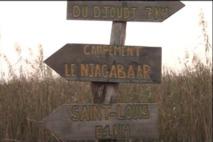 Ecométrages 2012 : Djoudj, le paradis des oiseaux migrateurs