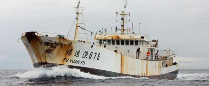Enquête: Greenpeace révèle comment les navires « Fu Yuan Yu » pillent les eaux sénégalaises