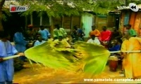 """Clip Retro! Mbaye Dieye Faye et le Sing-Sing Rythm: """"Oupoukay"""""""