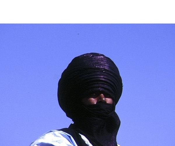 La France soupçonnée.  Le Mali sauvé ?