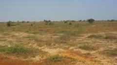 La collectivité lébou contre le bradage foncier à Rufisque...