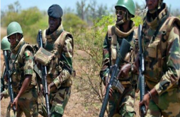 Commune de Sindian: L'Armée détruit un vaste champ de chanvre indien