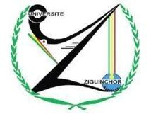 Ziguinchor: Un étudiant retrouvé pendu dans la forêt