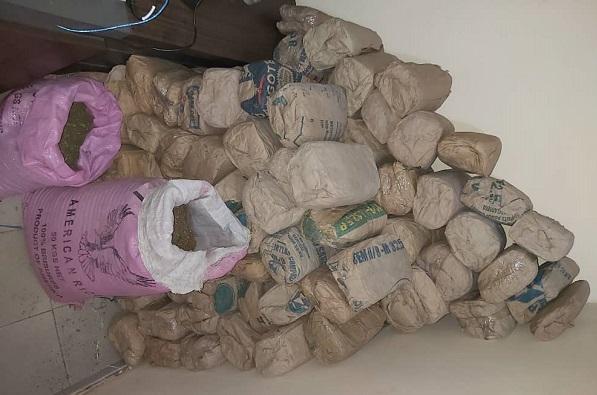 Descente de l'OCRTIS à Kolda : Une bande de trafiquants détale, laissant 127 kilos de chanvre indien