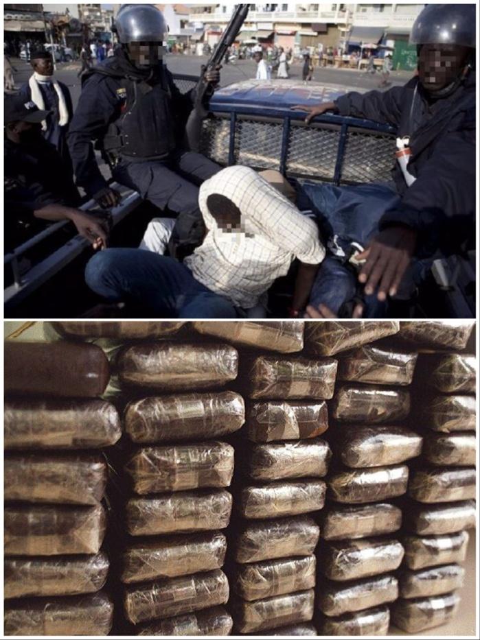 Gambie: Nouvelle saisie de cocaïne et de haschisch, la DLEAG arrête plusieurs individus