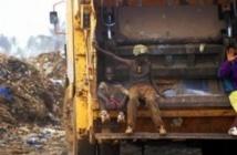 Le syndicat du nettoiement en grève illimitée à partir de demain