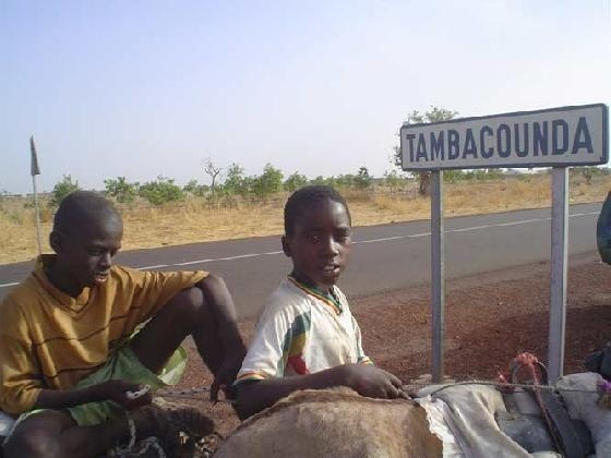 Tambacounda : 42 filles primées au terme d'un concours sur les sciences