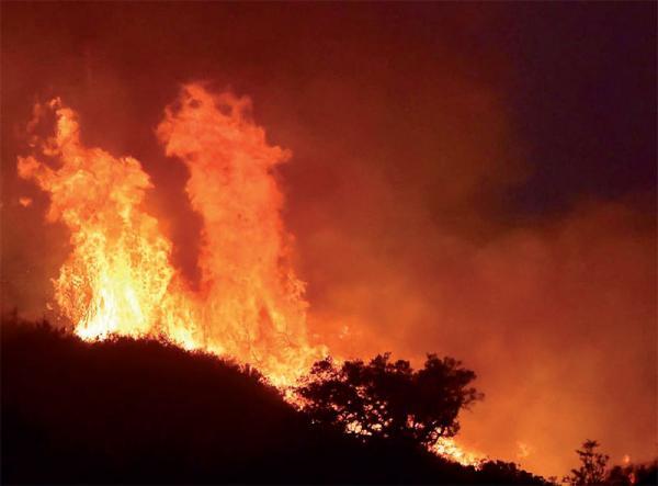 Sédhiou: le tapis herbacé dans de sales draps, 14.259 hectares brûlés en 05 ans