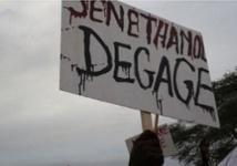 Projet Sen-huile Sen-éthanol: Les éleveurs menacent d'assiéger le Palais avec 30.000 bœufs