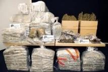 Trafic de drogue : Une Sénégalaise tombe à Lagos avec de l'héroïne cachée dans ses parties intimes