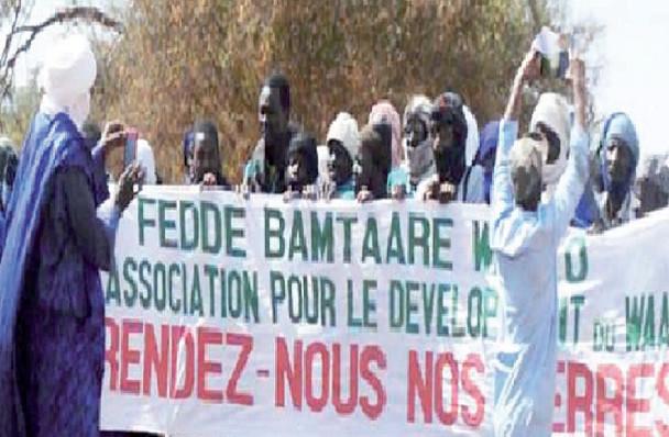 Autre litige foncier : Ndiaél revendique ses 20.000 hectares attribués à des étrangers