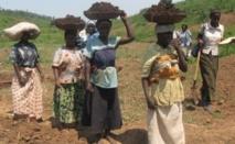 La fédération nationale des femmes rurales contre la discrimination dans la distribution des semences et des terres