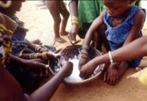 Bambey : Caritas lutte contre la malnutrition