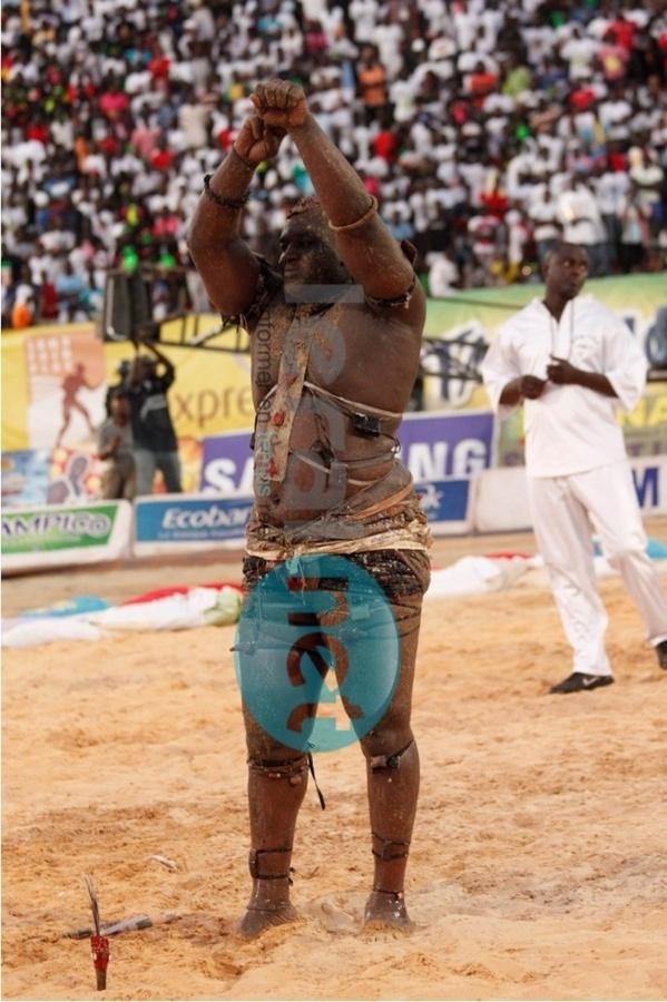 Arène sénégalaise: Balla Gaye 2 est incontestablement le meilleur !