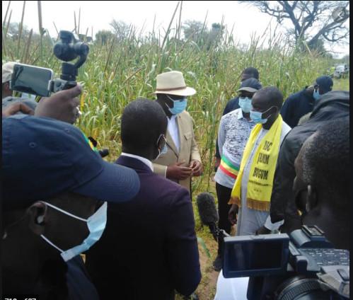 Après la Korité: Macky Sall va reprendre ses tournées économiques