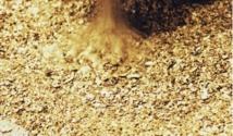 Pour la découverte d'un filon d'or : Il paye aux génies les deux bras de son frère
