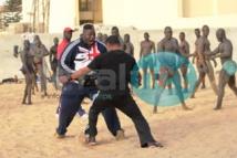 Après son coup de gueule, Tapha Tine dit oui à Aziz Ndiaye pour ses prochains combats