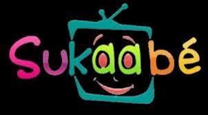 FARE 2013 : la 6éme édition se tient les 6 et 7 Juillet à Dakar