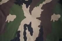 Un ancien militaire de 26 ans meurt noyé dans le fleuve