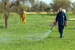 Une application des lois sur les pesticides réclamée lors d'un atelier à Thiès