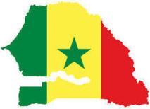 5000 demandes en 48 heures depuis l'effectivité du visa d'entrée au Sénégal