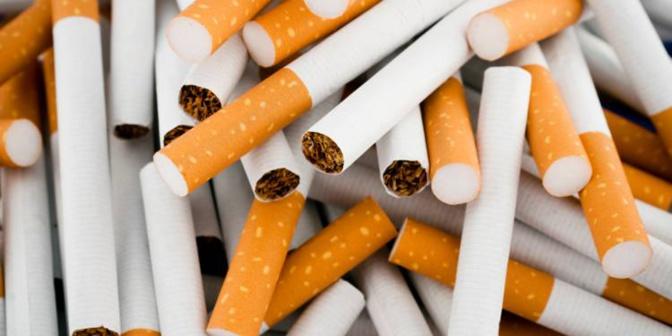 Le Sénégal compte 500 000 fumeurs