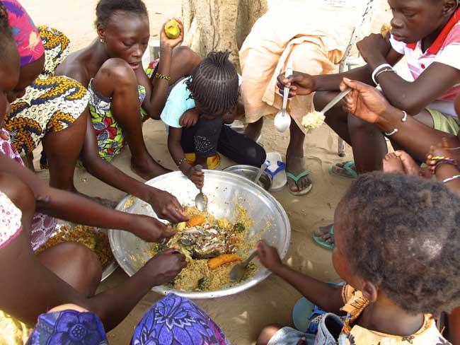 """""""De grandes entreprises européennes complices de l'insécurité alimentaire en Afrique de l'Ouest"""" ( Greenpeace)en"""