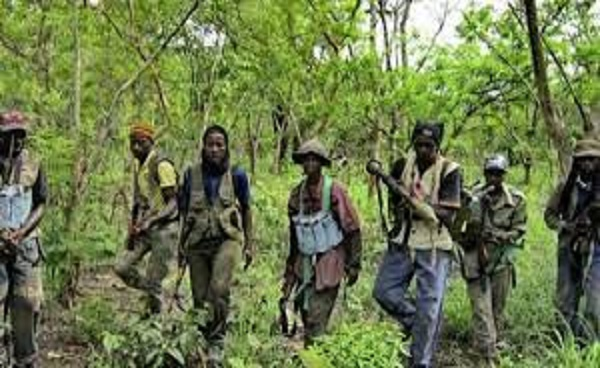 Opération de sécurisation en Casamance: L'Armée sénégalaise récupère cinq bases du MFDC