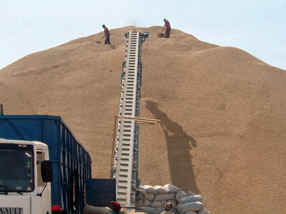 Plaidoyer pour une démarche inclusive au service du développement de l'agriculture au Sénégal