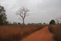 Mbacké : 13 villages bénéficient de latrines
