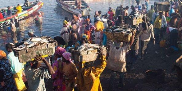 Accords de pêche Gambie-Sénégal: L'Assemblée nationale gambienne demande leur suspension