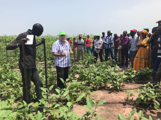 Domaines agricoles communautaires: Leur importance mise en exergue