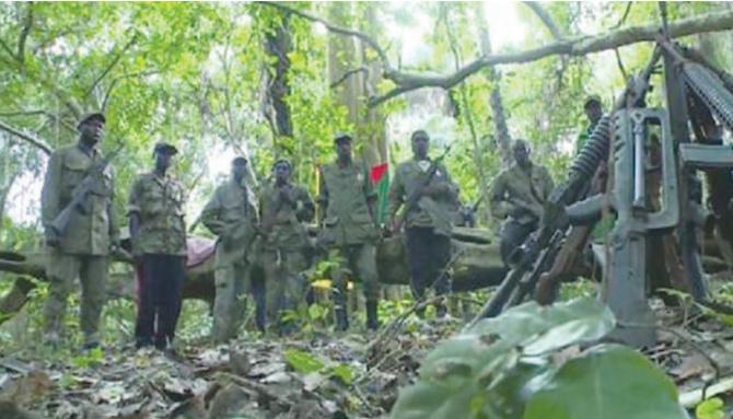 Processus de paix en Casamance: Le MFDC veut savoir où passe l'argent des Ong qui lui est destiné