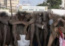 Quatre membres d'une bande de présumés voleurs de bétail déférés au parquet de Louga (gendarmerie)