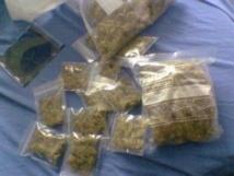 Prison du Cap manuel : 250g de chanvre découverts dans une chambre