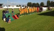 Sénégal (1-1) Zambie but de Dame Ndoye et Mulenga, match amical du 14 Août 2013 (terminé)