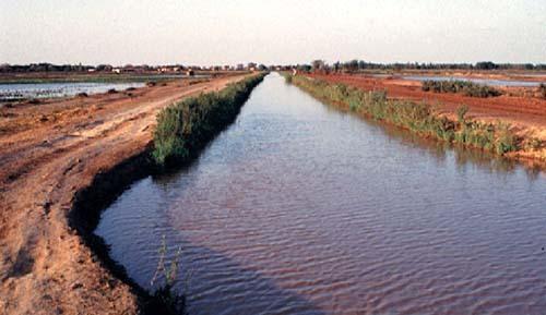 Risques d'inondation dans la vallée du fleuve : L'Omvs sonne l'alerte