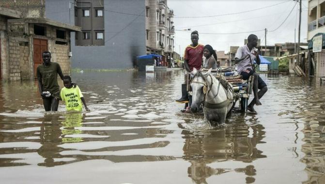 Guy Marius Sagna: « Les membres du gouvernement n'habitent pas dans les quartiers inondés »
