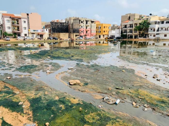 VIDEO-PHOTOS / Sabotage des canalisations de Keur Massar: Des murs érigés pour freiner l'évacuation des eaux de pluie