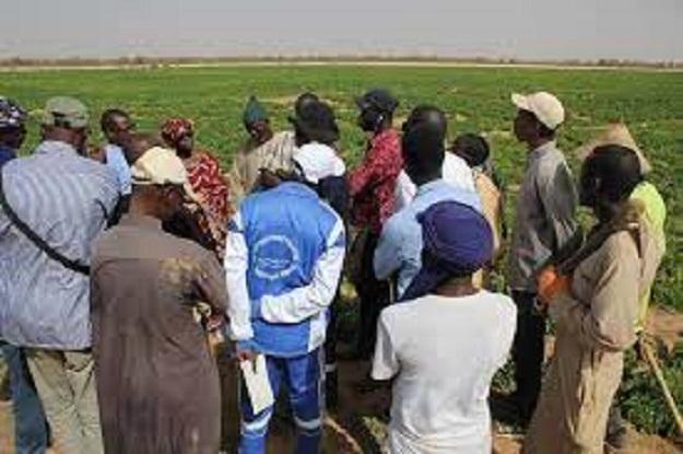 Amélioration des conditions de vie des populations: Le Waqf joue sa partition à Dabia dans le Matam