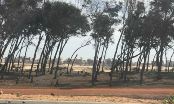 Litige foncier sur le littoral à Guédiawaye: Le préfet accusé