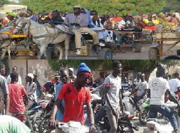 Transport à Touba durant le Magal: Les charretiers et conducteurs de Jakarta se sont frottés les mains