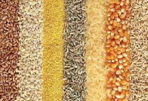 Fouladou Les premières récoltes déjà sur le marché