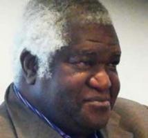 Qui a déterré ce dinosaure nommé Mamadou Ndoye ? (Par Mamadou Diop)