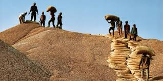 Commercialisation de l'arachide: Les exigences des banques