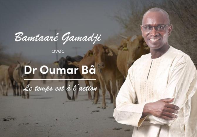 Le Docteur Oumar Bâ, investi par les populations à la Mairie de Gamadji Saré