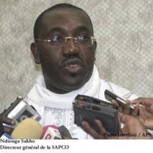 Sapco: Les effarantes découvertes sur la gestion de Ndiouga Sakho