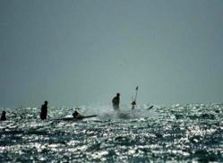 Journée mondiale de la pêche : « Pour une sécurité alimentaire qui passe par le bannissement des mauvaises pratiques »