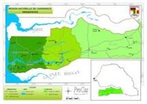 Le conflit Casamancais  (Moustapha NDIAYE)