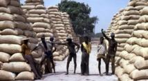 Menace sur la filière arachidière (Par Demba Sow)